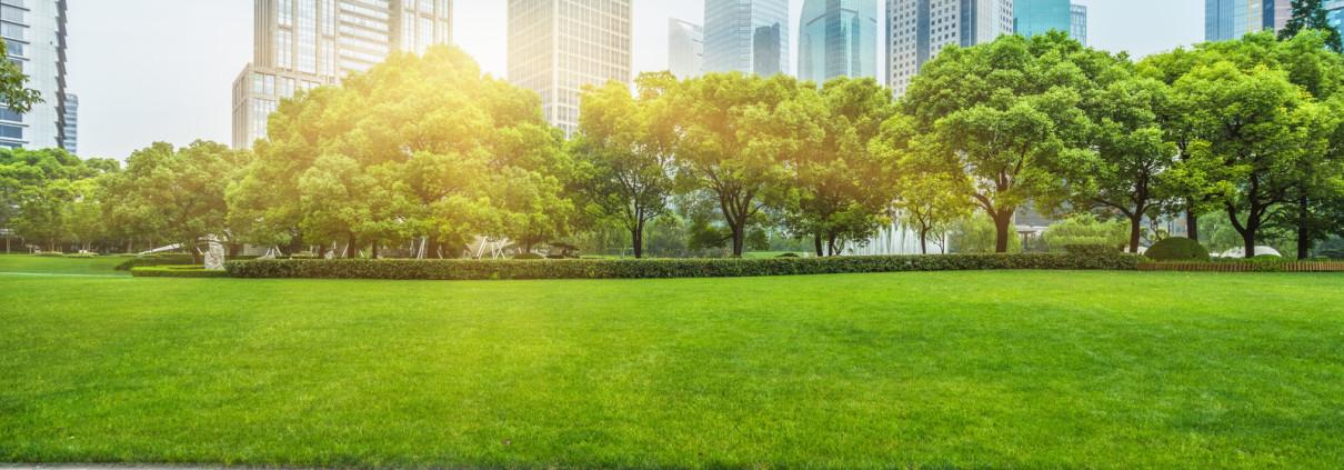Tagrisk Insurance Industry News Central Park