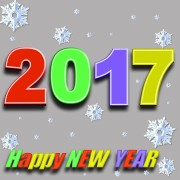 Happy Holidays and a New Year 2017 from Tagrisk Insurance Services